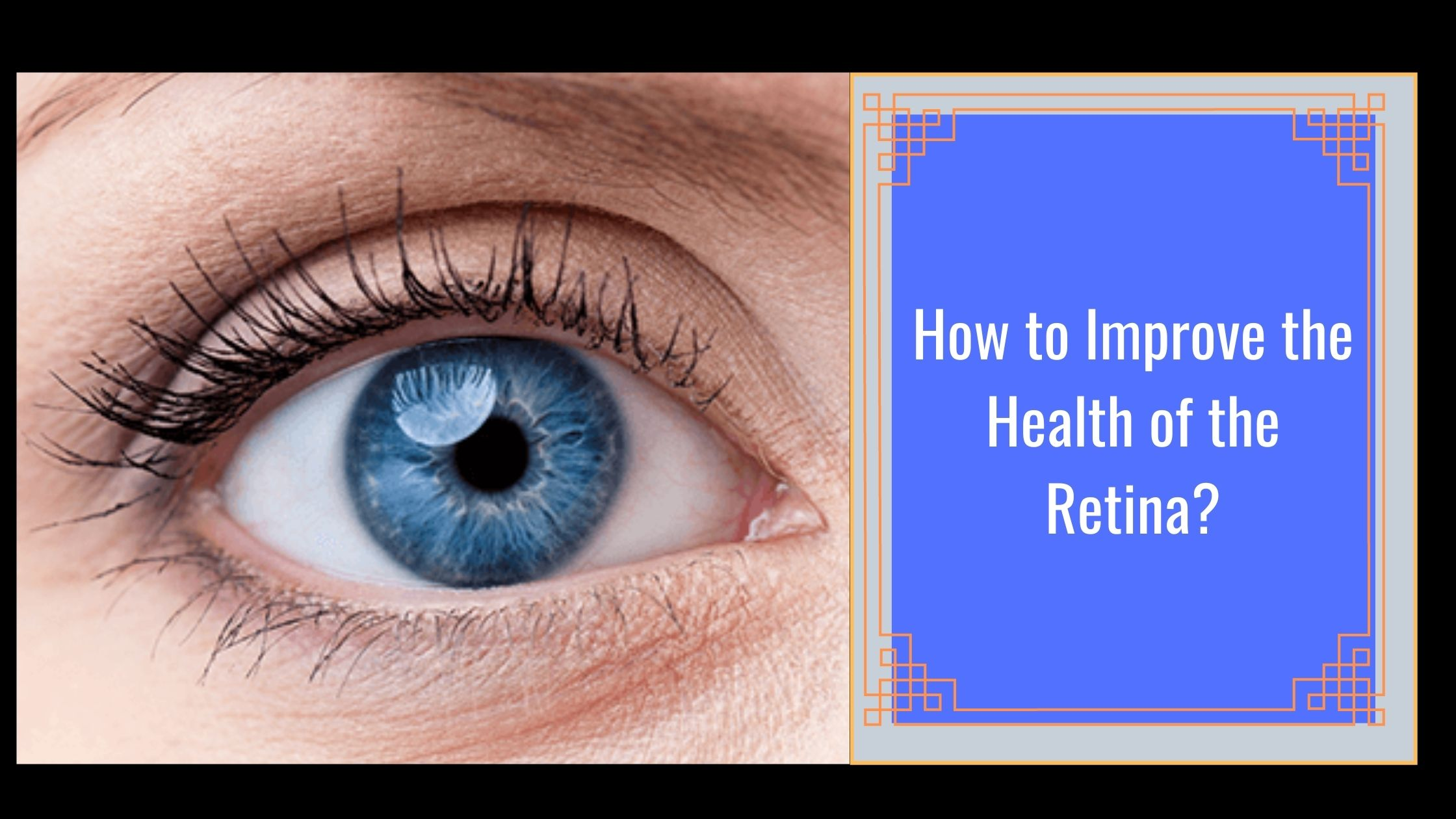 How to Improve the Health of the Retina?